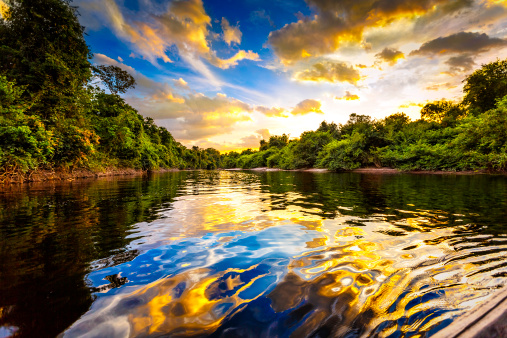 Amazon Rainforest「Dramatic landscape on a river in the amazon state Venezuela」:スマホ壁紙(12)