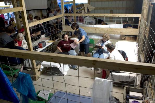 Animal Eye「Rural Families Seek Free Health Care At Weekend Clinic」:写真・画像(15)[壁紙.com]