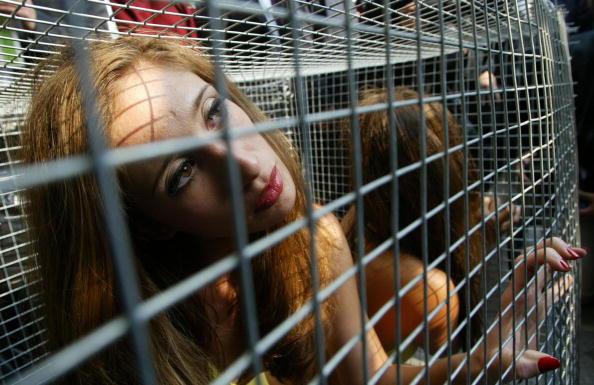 Chicken Meat「KOR: PETA Members Protest Against Animal Suffering In Seoul」:写真・画像(3)[壁紙.com]