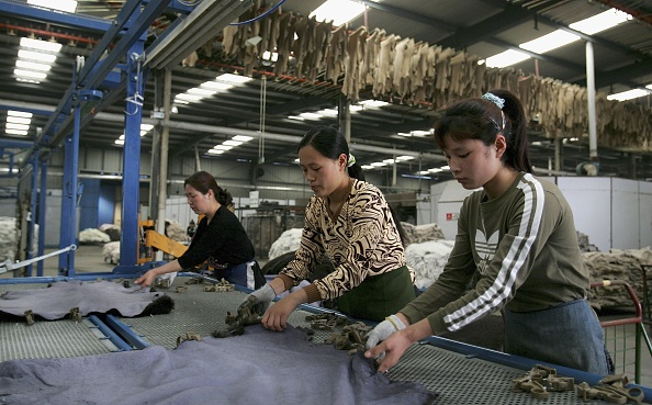 Fur「People Work At Longfeng Leather & Fur Factory」:写真・画像(10)[壁紙.com]