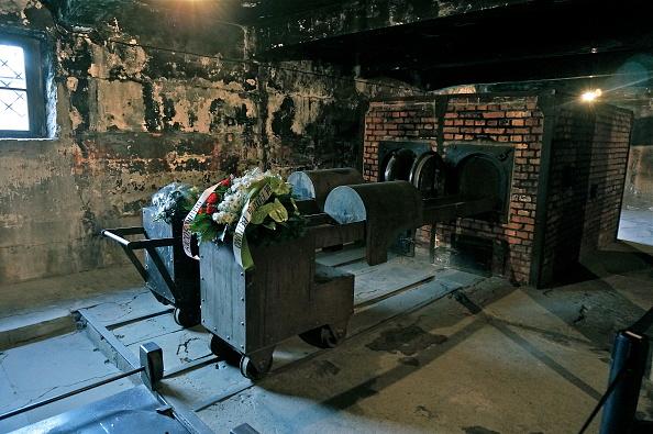 Oven「Crematorium At Auschwitz I」:写真・画像(14)[壁紙.com]