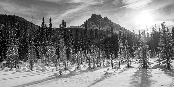 Yoho National Park「Snow on the rugged Canadian Rocky Mountains and a snow covered field, Yoho National Park」:スマホ壁紙(1)