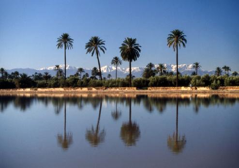 アトラス山脈「Waterpool,Atlas Mountains, Marrakech」:スマホ壁紙(6)
