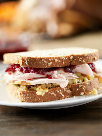 Mayo - Florida「Turkey Sandwich with Stuffing and Cranberries」:スマホ壁紙(3)