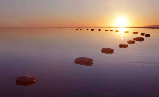 Stepping stones over water:スマホ壁紙(壁紙.com)