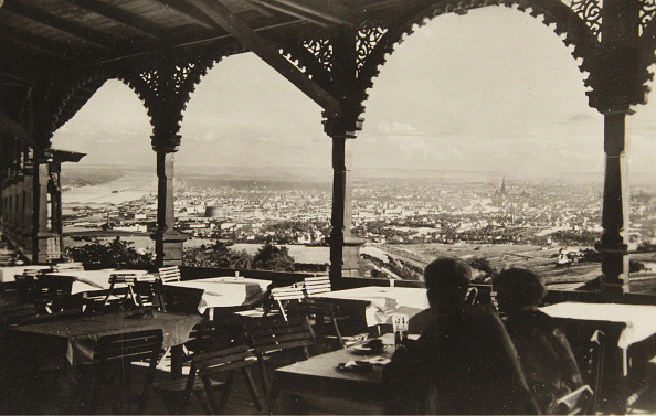 Vienna - Austria「View From The Restaurant On The Kahlenberg City」:写真・画像(8)[壁紙.com]