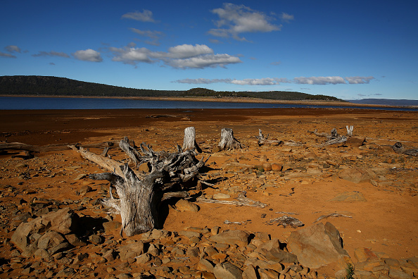 Great Lakes「Tasmanian Dam Levels At Record Lows」:写真・画像(8)[壁紙.com]