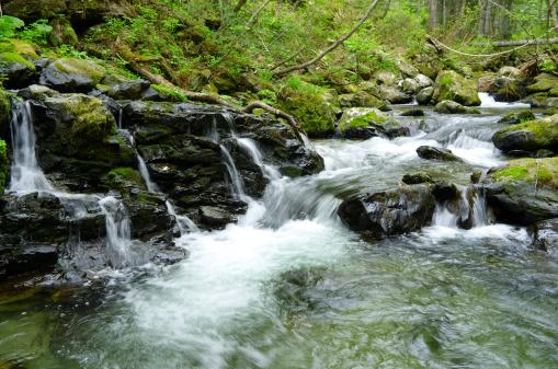 River「Stream rocks」:スマホ壁紙(4)