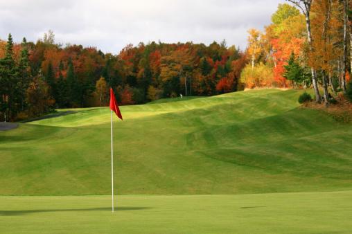 秋「の丘陵のゴルフコースにマルチカラーの葉っぱの木が生い茂ります。」:スマホ壁紙(12)