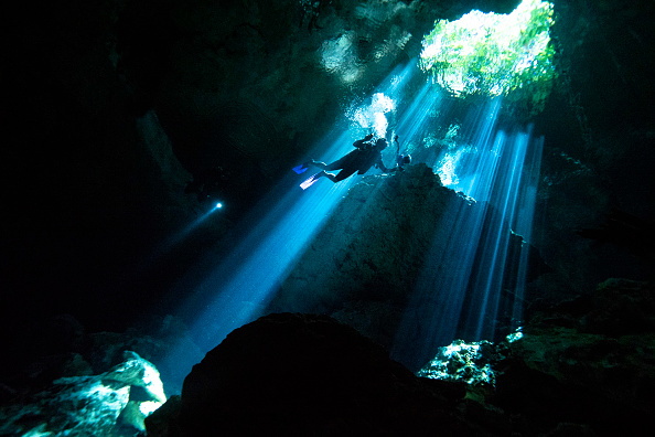 Underwater「Yucatan Peninsula」:写真・画像(3)[壁紙.com]