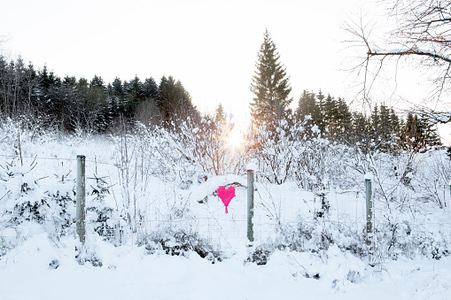 雪景色「Woven heart at fence in winter landscape」:スマホ壁紙(15)
