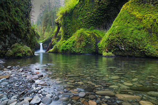 Columbia River Gorge「Punch Bowl Falls and Greenery on Eagle Creek」:スマホ壁紙(1)