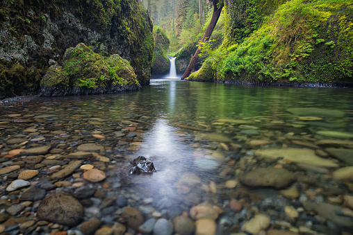 Columbia River Gorge「Punch Bowl Falls on Eagle Creek」:スマホ壁紙(12)