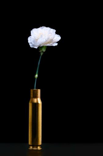 カーネーション「ホワイトのカーネーション内側弾薬シェル-平和の象徴」:スマホ壁紙(11)