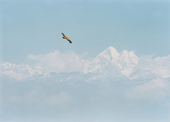 Himalayas「A View Of Mount Everest From Nepal」:写真・画像(15)[壁紙.com]