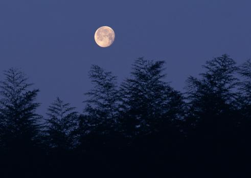 京都の夜「Full moon in clear sky」:スマホ壁紙(13)