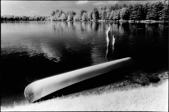 Water's Edge「In The Water At Lake Waynewood」:写真・画像(17)[壁紙.com]