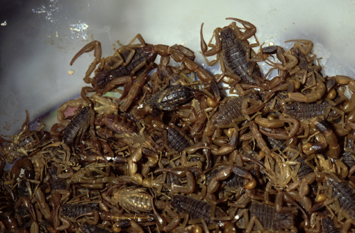Szechuan Cuisine「Scorpions sold for food, China」:スマホ壁紙(10)