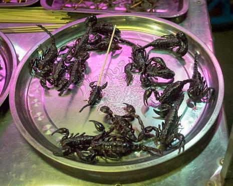 Tray「scorpions, Siem Reap Cambodia」:スマホ壁紙(10)
