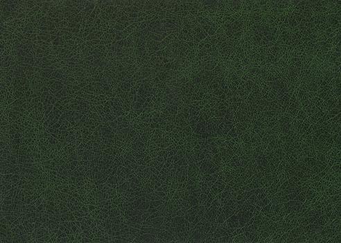Animal Skin「Green leather.」:スマホ壁紙(8)