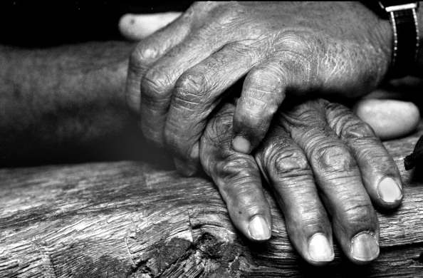Hand「Boxer's Hands」:写真・画像(12)[壁紙.com]