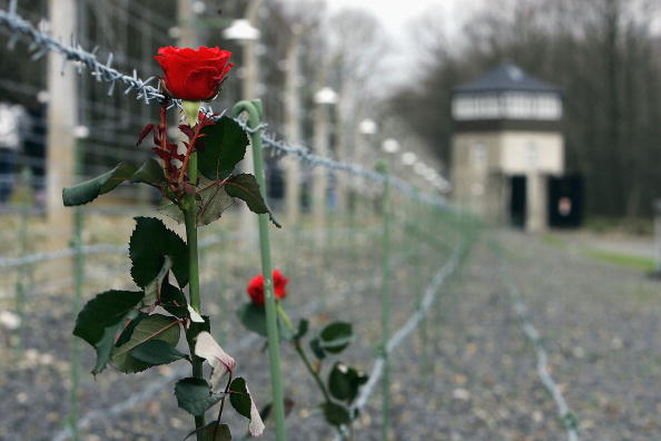 Barbed Wire「60th Anniversary Of Liberation Of Buchenwald Concentration Camp」:写真・画像(14)[壁紙.com]