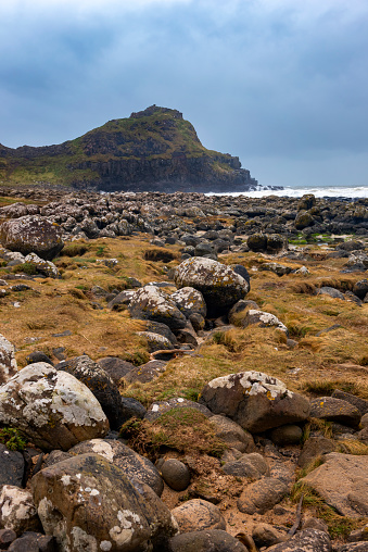 Basalt「Rocky shores of the dramatic Giant's Causeway and Causeway Coast」:スマホ壁紙(19)