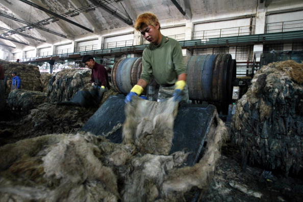 Agricultural Building「Mongolian Leather Workers Prepare Sheepskins」:写真・画像(6)[壁紙.com]