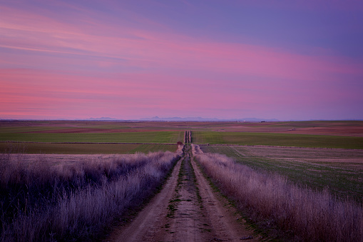 Camino De Santiago「Straight road in Castilla at dusk, with the mountains of León in the background. It is part of the Camino de Santiago de Madrid while it passes through the province of Valladolid. Province of Valladolid. Castile and Leon. Spain」:スマホ壁紙(16)