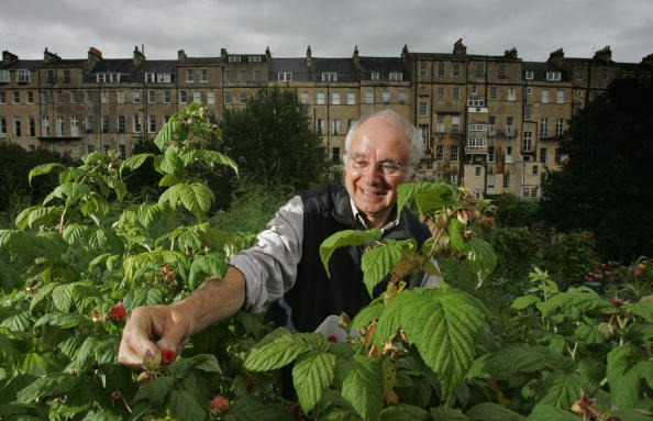 Community Garden「Demand For Allotments Soars」:写真・画像(7)[壁紙.com]