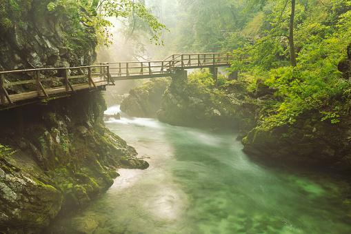 Footbridge「Slovenia, Gorenjska, National Park Triglav, Vintgar Gorge」:スマホ壁紙(0)