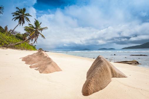 Frond「Golden sands tropical island beach blue ocean lagoon」:スマホ壁紙(17)