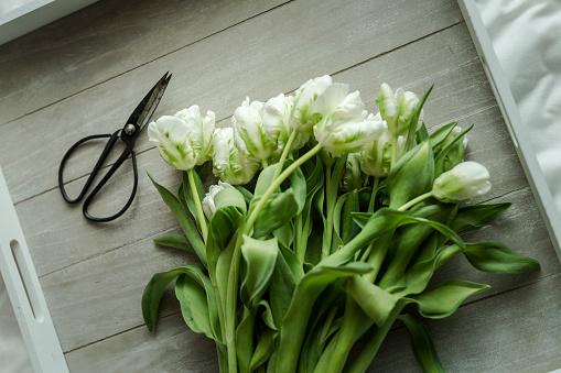 春「White tulips and scissors on wooden tray」:スマホ壁紙(8)