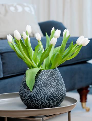 チューリップ「ホワイトのチューリップの花瓶」:スマホ壁紙(6)