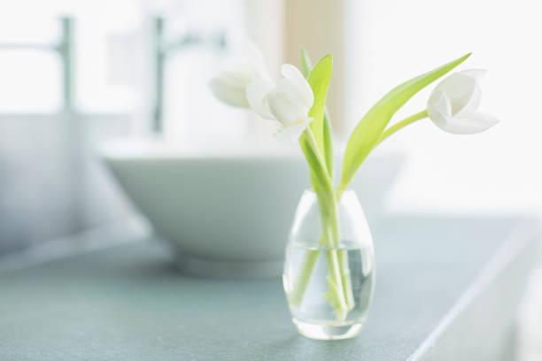 White tulips in bud vase in bathroom:スマホ壁紙(壁紙.com)