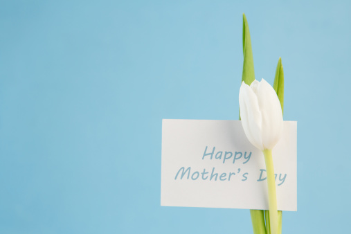 母の日「White tulip with a happy mothers day card on a blue background」:スマホ壁紙(19)