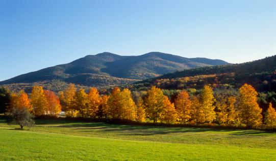 Vermont「New England Autumn Field and Mountains」:スマホ壁紙(17)