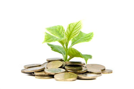 Loan「plant and coıns」:スマホ壁紙(9)