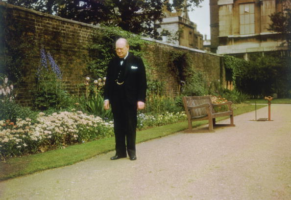 Front or Back Yard「Churchill In Garden」:写真・画像(10)[壁紙.com]
