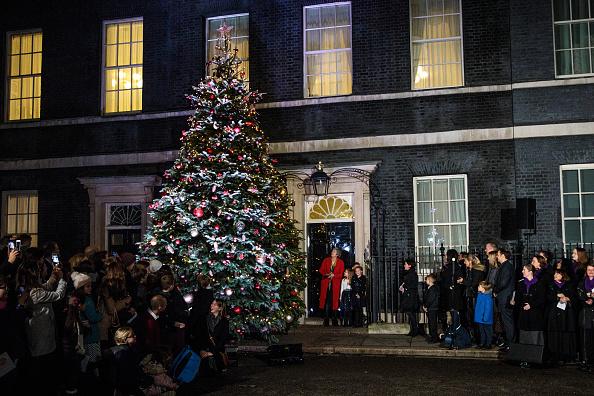 Christmas Tree「Number 10 Lights Up Its Christmas Tree」:写真・画像(10)[壁紙.com]