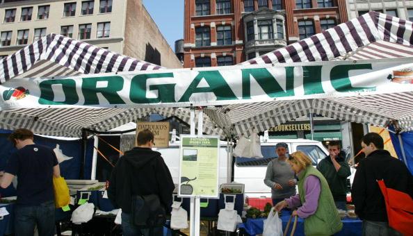 成長「Organic Foods Gain In Popularity」:写真・画像(11)[壁紙.com]