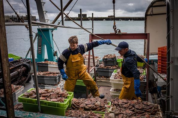 Fisherman「France Threatens A Reprisal As Post-Brexit Fishing Row Deepens」:写真・画像(4)[壁紙.com]