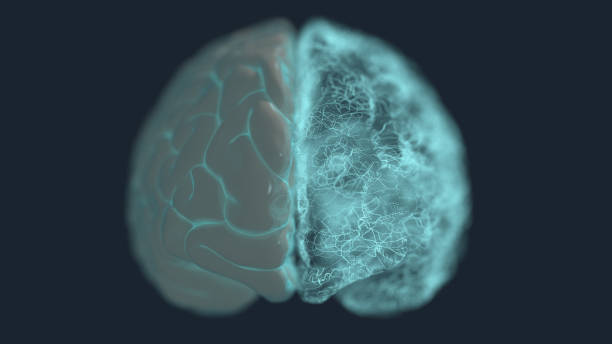Augmented brain:スマホ壁紙(壁紙.com)