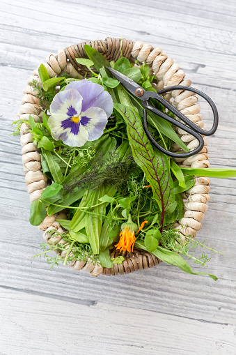 Fennel「Basket of wild herbs and edible flowers」:スマホ壁紙(16)