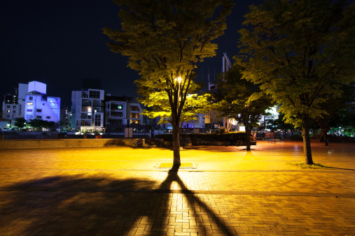 Town Square「Nakasu Island at Night」:スマホ壁紙(17)