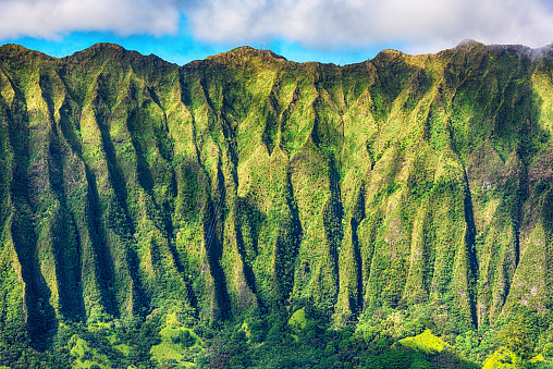 Hawaii Beach「Mountainside Detail of Oahu's Landscape」:スマホ壁紙(11)