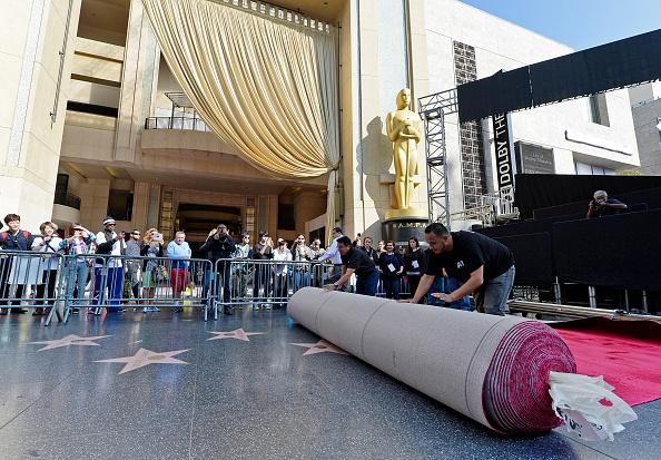 カリフォルニア州ハリウッド「87th Annual Academy Awards - Red Carpet Installation Photo Op」:写真・画像(19)[壁紙.com]