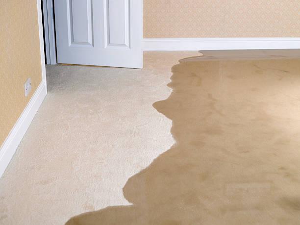 Living room carpet flooding:スマホ壁紙(壁紙.com)