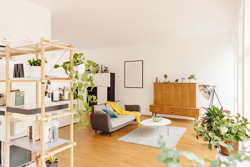 植物「Living room and shelf with plants in modern house」:スマホ壁紙(7)