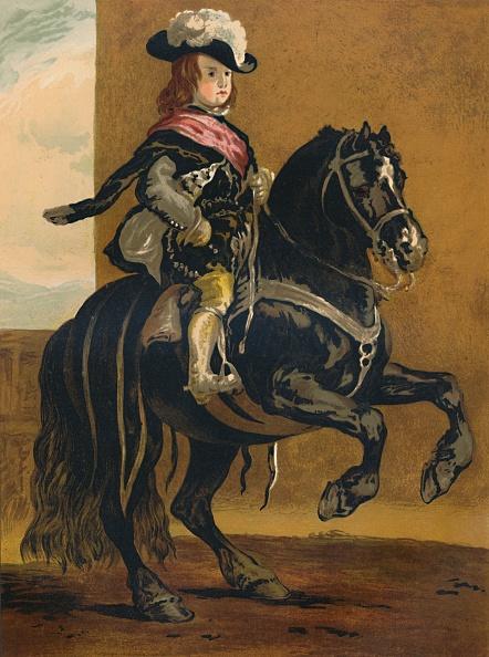 Horse「A Pupil Of La Haute Ecole - Don Balthazar」:写真・画像(16)[壁紙.com]
